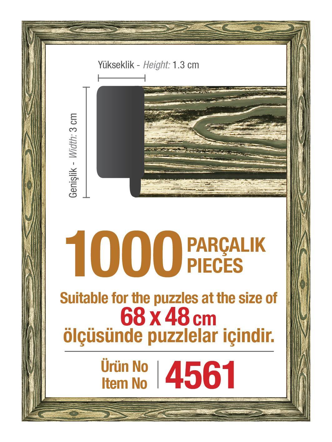 4561 Art Puzzle Çerçevesi 1000